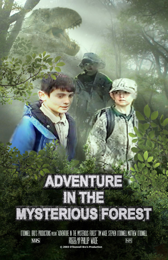 Adventure in the Mysterious Forest