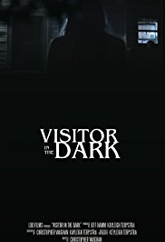 Visitor in the Dark